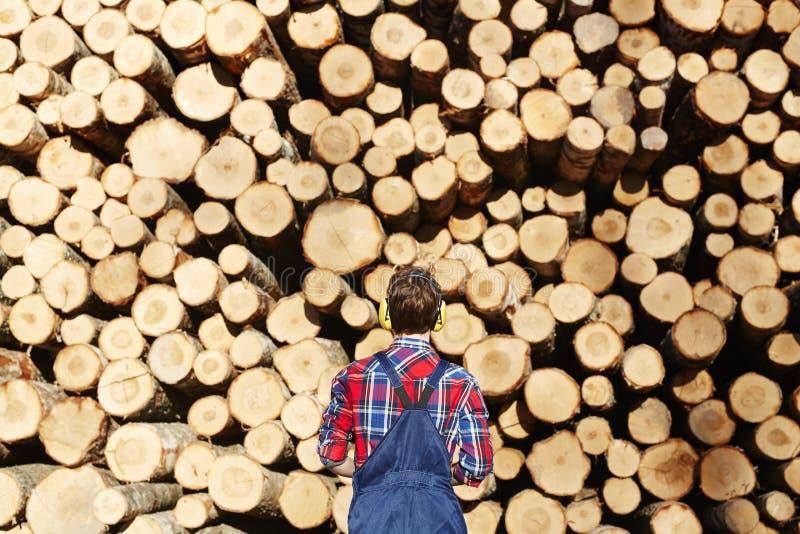 Arborist stock photo