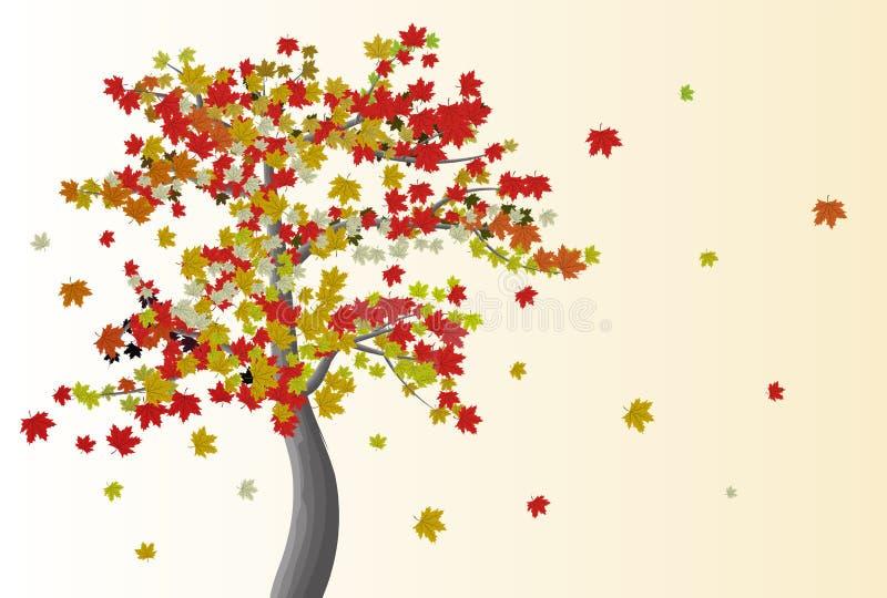 Arbre d'érable avec des feuilles illustration libre de droits