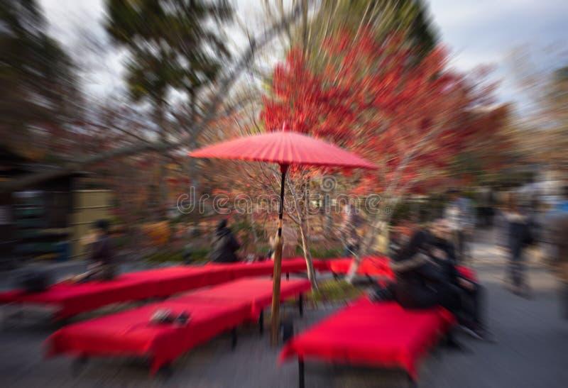 Arbre d'érable en automne Japon avec l'effet de bourdonnement images stock