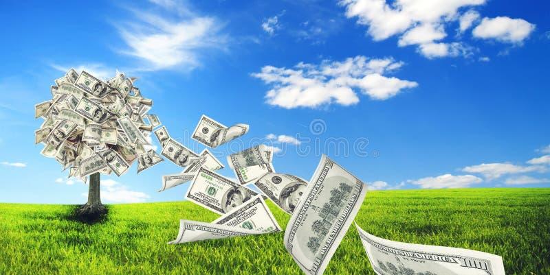 Arbre d'argent image stock