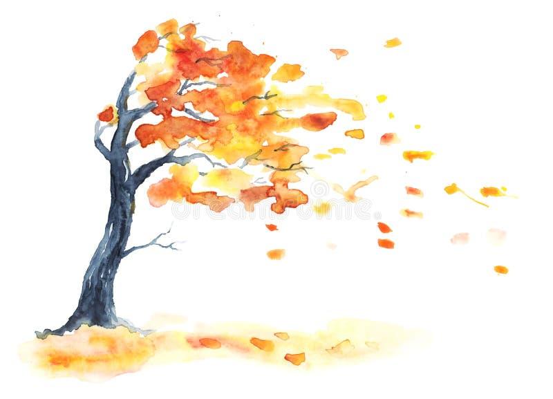 Arbre d'automne d'aquarelle avec les feuilles jaunes et d'orange illustration stock