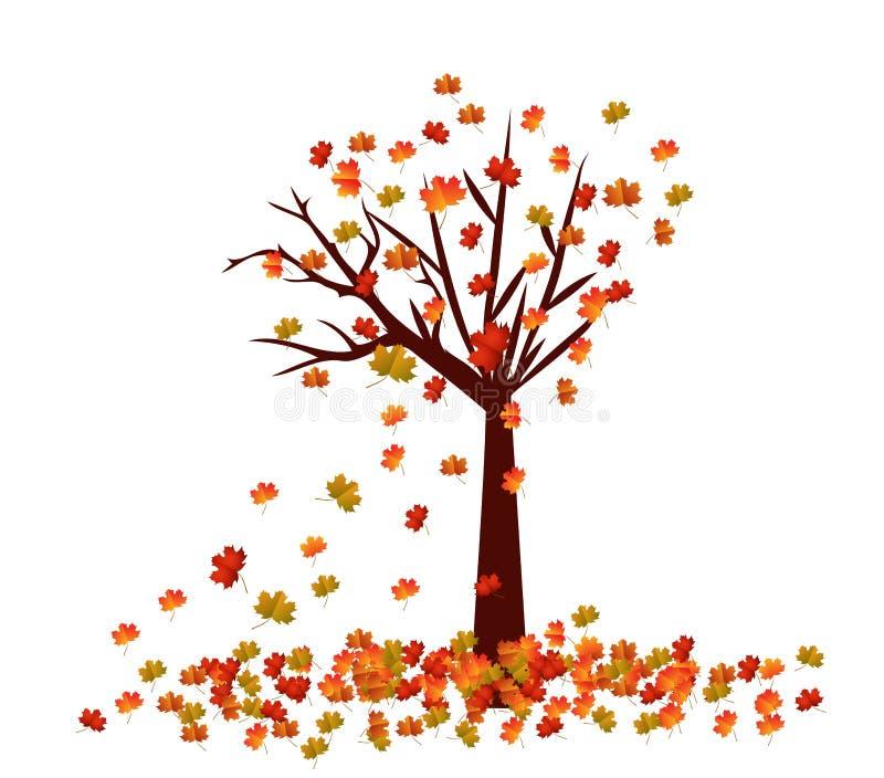 Arbre d'automne La chute laisse le fond illustration libre de droits