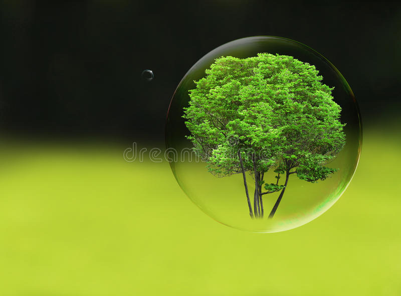 Arbre dans une bulle illustration stock