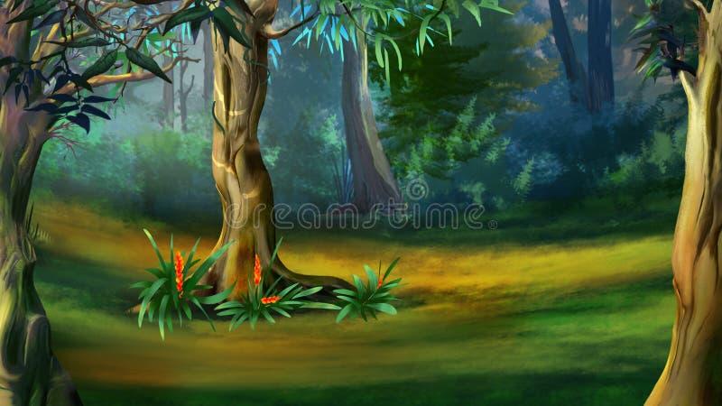 Arbre dans une forêt dense dans un jour d'été illustration libre de droits