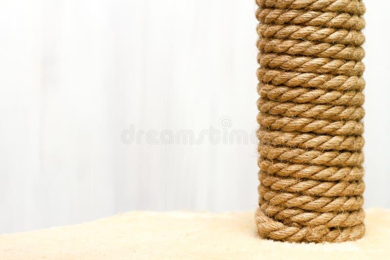 Arbre de ?at et meubles, chat de corde de sisal rayant le courrier sur le tapis beige sur le fond blanc images libres de droits