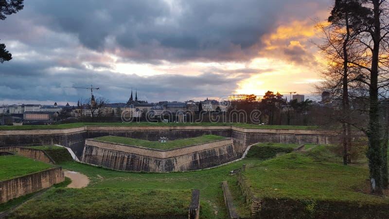 Arbre de bâtiment de royaume de ville de château images libres de droits