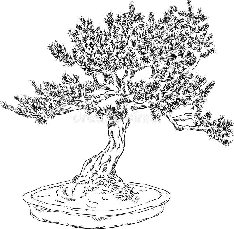 Arbre de bonsaïs illustration de vecteur