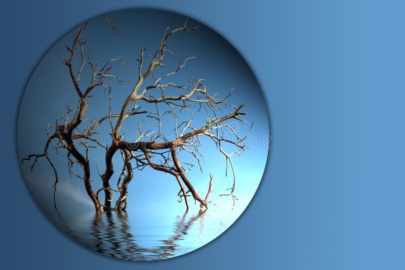 arbre de bouton nu de branchement photo stock