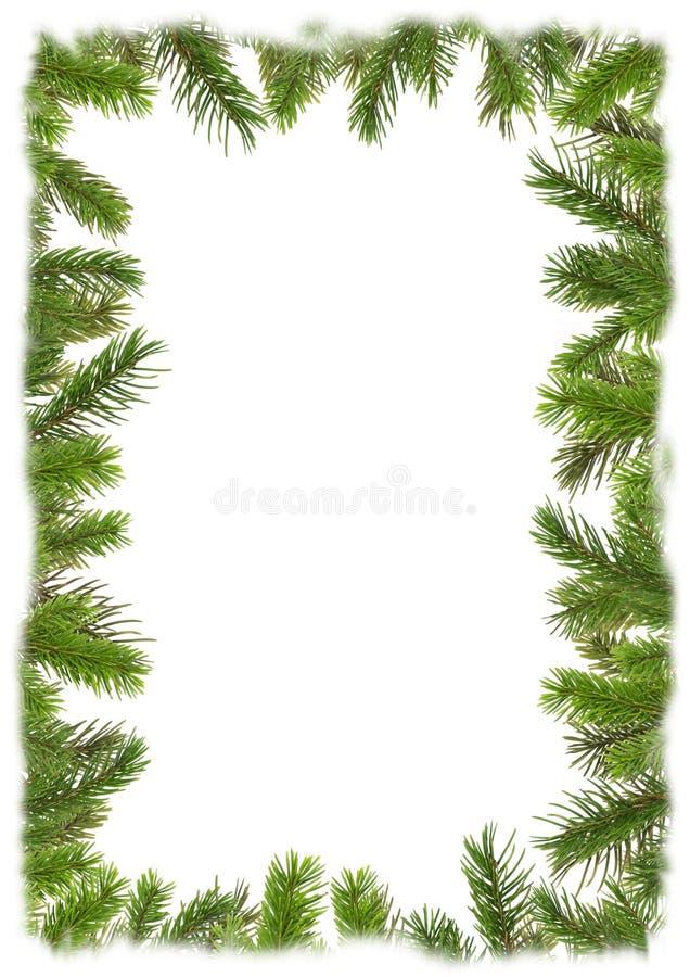 arbre de cadre de Noël de 2 branchements illustration libre de droits