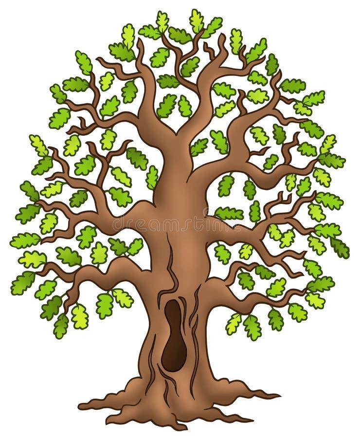 Arbre de chêne illustration libre de droits