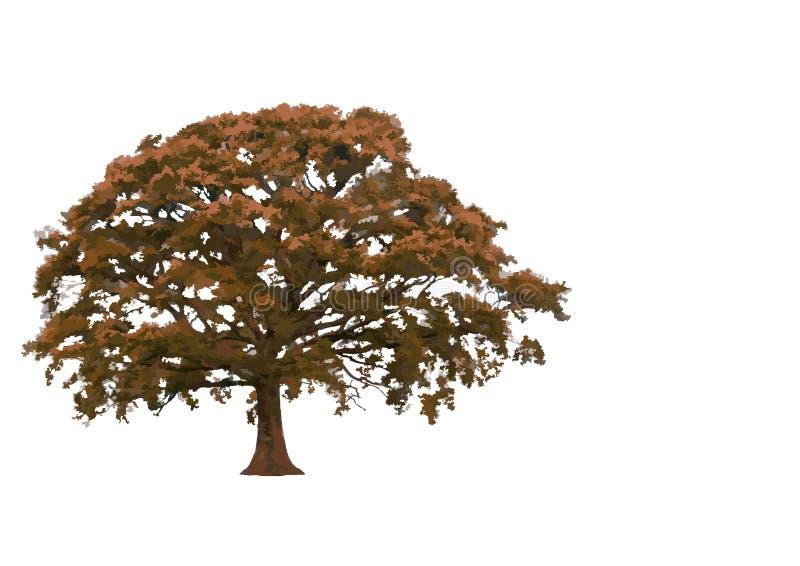 Arbre de chêne automnal abstrait illustration libre de droits
