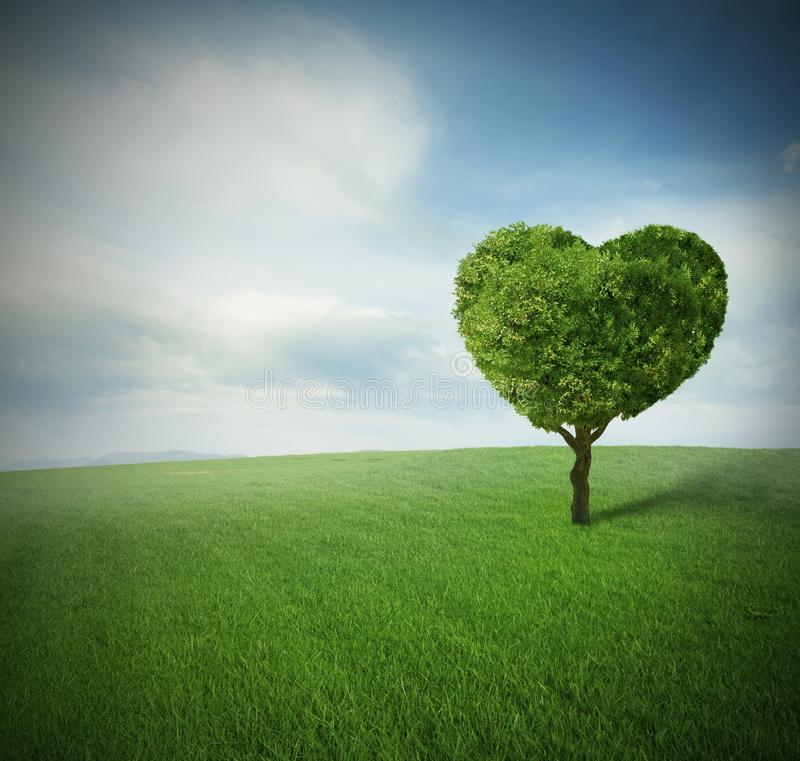 Arbre de coeur photo stock