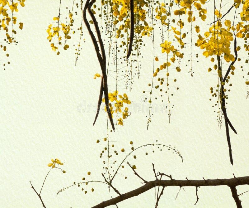 Arbre de douche d'or sur le papier fabriqué à la main photo stock