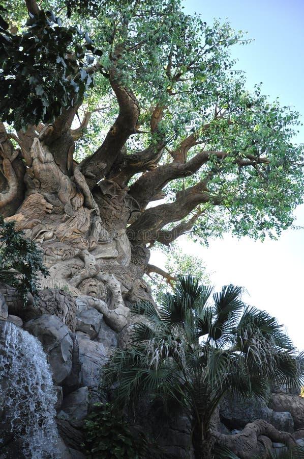 Arbre de durée dans le règne animal de Disney photo stock