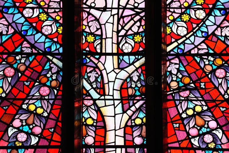 Arbre de fenêtre en verre teinté de la vie image stock