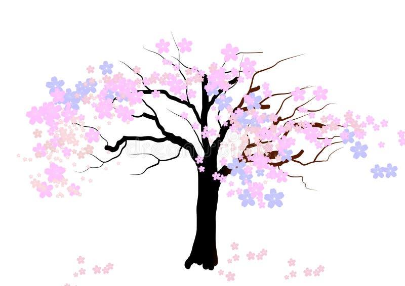 Arbre de fleurs de cerisier sur le fond blanc, illustration de vecteur illustration libre de droits