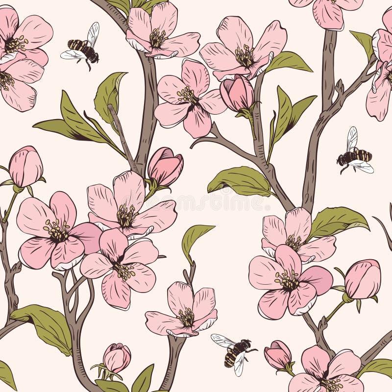 arbre de floraison Configuration sans joint avec des fleurs Texture florale de ressort Illustration botanique tirée par la main d illustration stock