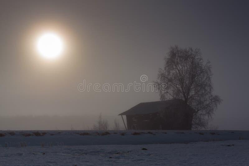 Arbre de grange et de bouleau par les champs photographie stock libre de droits