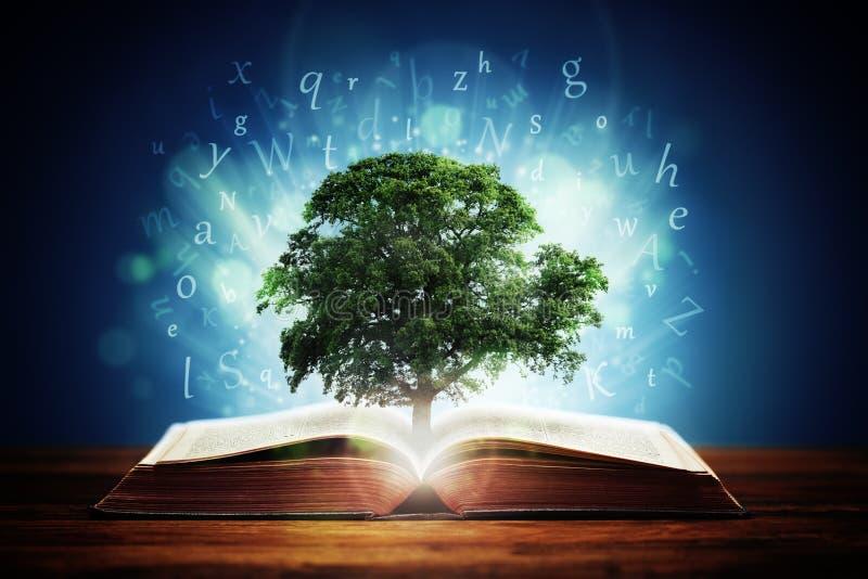 Arbre de la connaissance image libre de droits
