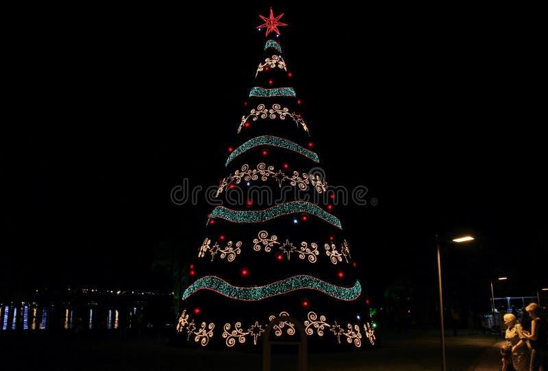 Arbre de Noël étant contemplé avec le lac à l'arrière-plan photo libre de droits