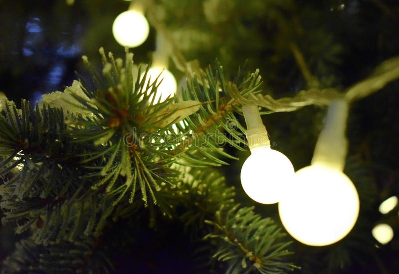 Arbre de Noël avec des guirlandes image libre de droits