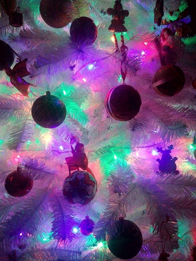Arbre de Noël avec des lumières photographie stock libre de droits