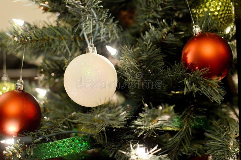 Arbre de Noël avec les ampoules rouges et blanches photo libre de droits