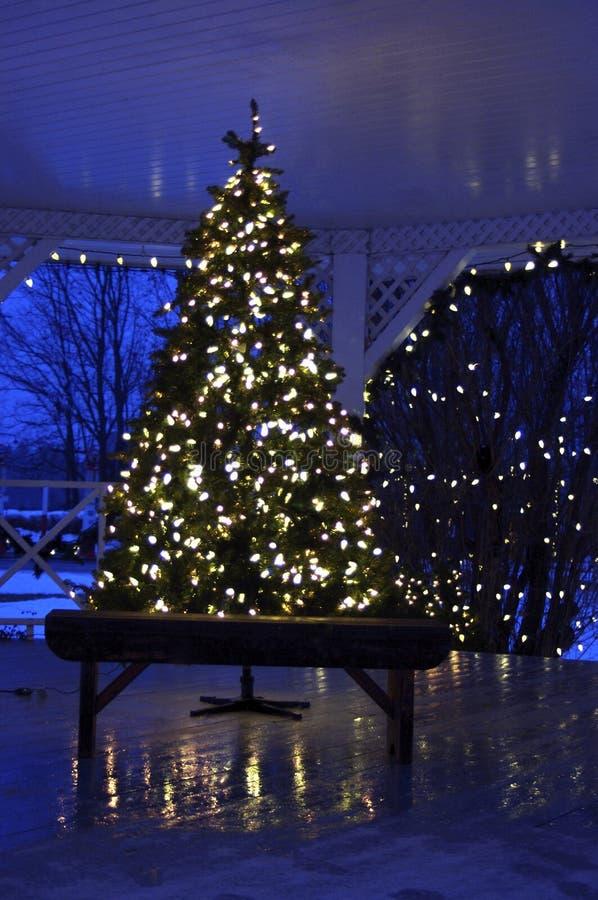 Arbre de Noël blanc dehors photo libre de droits