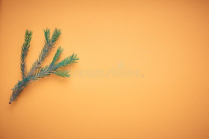 Arbre de Noël de branche sur un fond coloré, un endroit pour le texte photographie stock