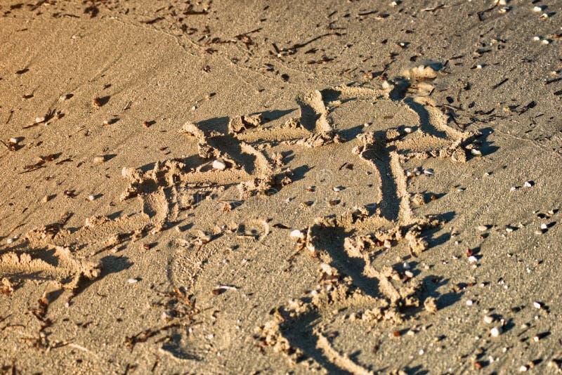 Arbre de Noël de courbes dans le sable images stock