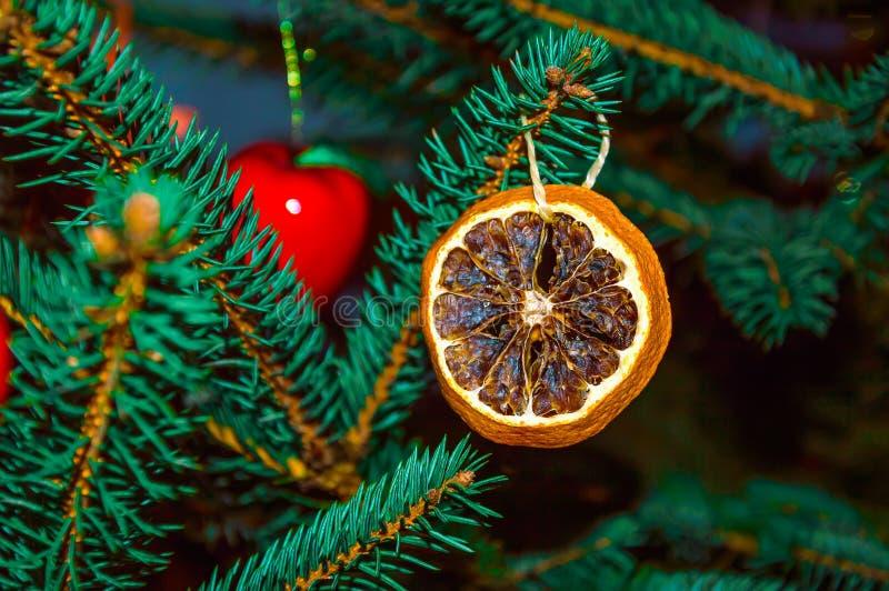 Arbre de Noël décoré de l'orange sèche Décoration organique de Noël Fond de vacances images stock