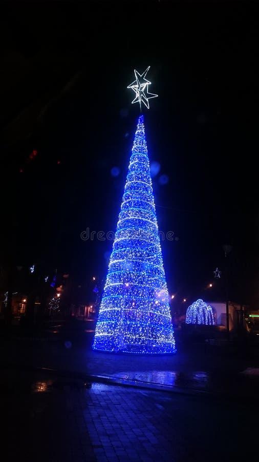 Arbre de Noël dans Kolbuszowa Pologne photographie stock libre de droits