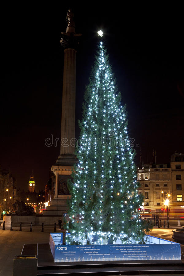 Arbre de Noël dans le grand dos de Trafalgar de Londres images stock