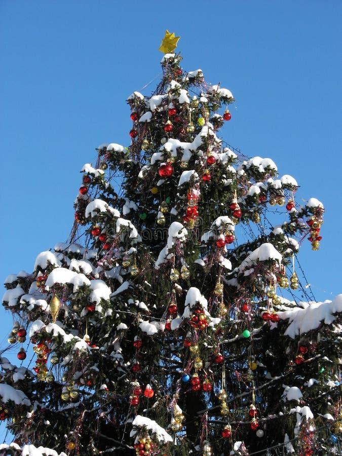 Arbre de Noël de nouvelle année dans Yaremche dans Carpathiens photographie stock libre de droits