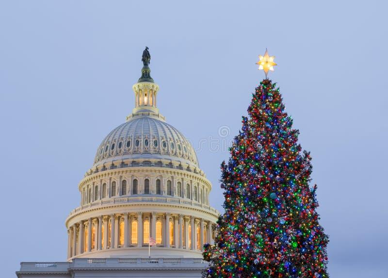 Arbre de Noël devant le Washington DC de capitol images libres de droits