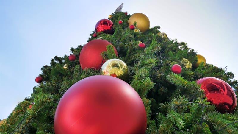 Arbre de Noël géant avec le rouge et les boules décoratives d'or vus du fond photos stock