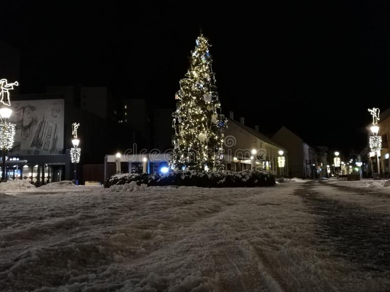 Arbre de Noël illuminé en ville photo libre de droits