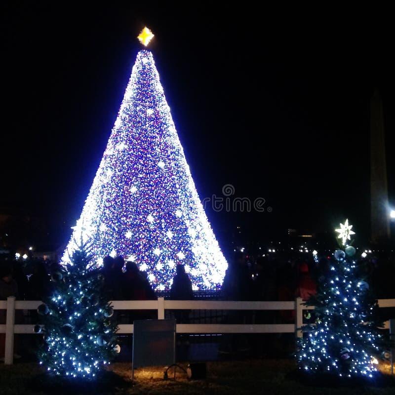 Arbre de Noël national images stock