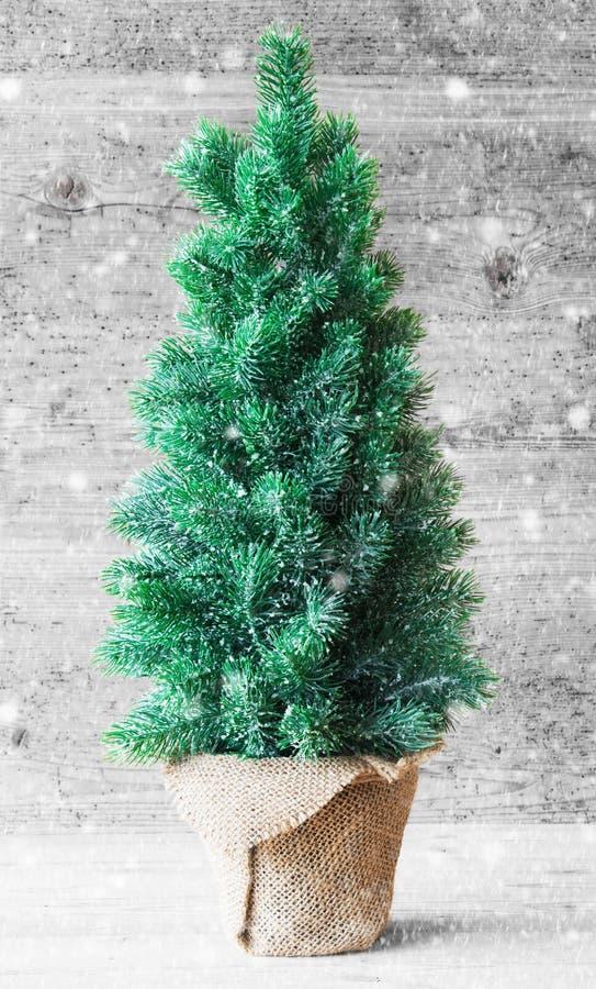 Arbre de Noël vertical, Gray Wooden Background, flocons de neige photographie stock