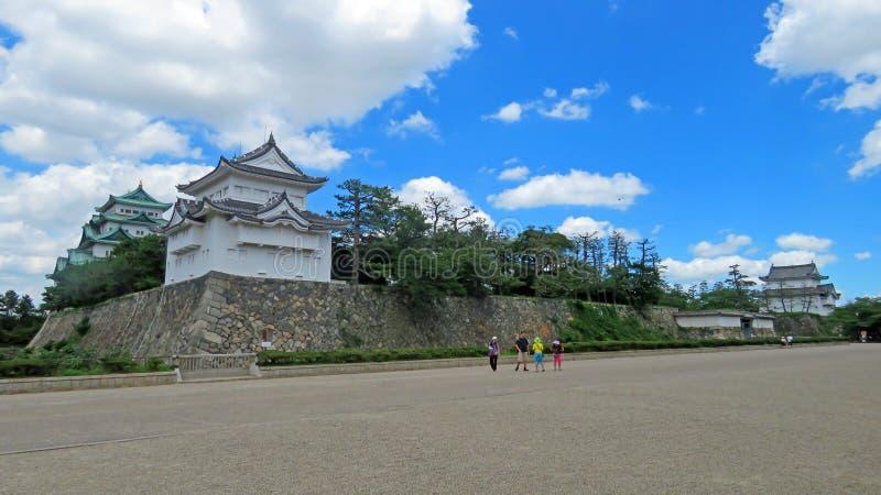 Arbre de noix de muscade de château de Nagoya au Japon images stock