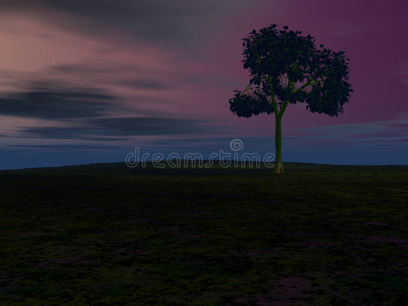 Arbre de nuit photo stock