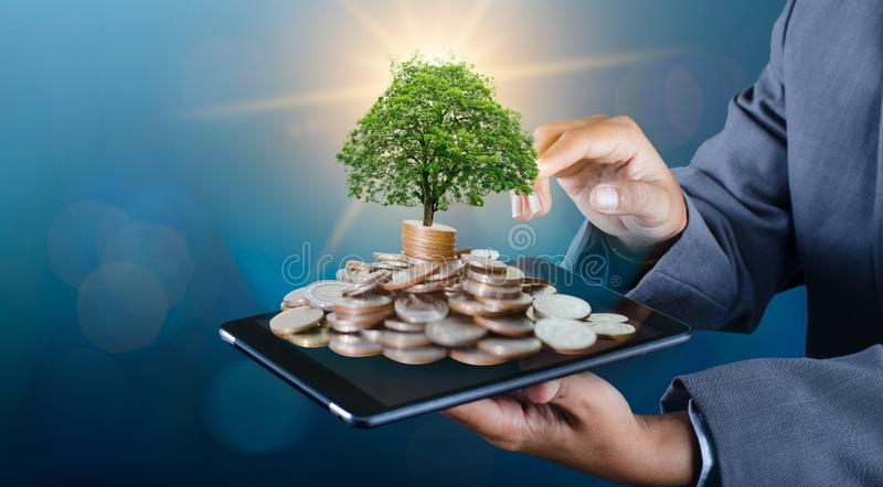 Arbre de pi?ce de monnaie de main que l'arbre se d?veloppe sur la pile Argent d'?conomie ? l'avenir Idées d'investissement et fon image libre de droits