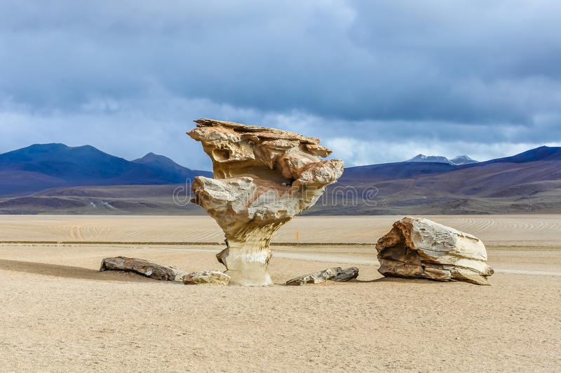 Arbre de roche de Salvador Dali dans le plateau andin élevé, Bolivie image stock