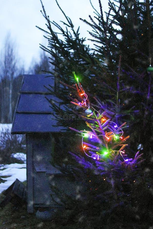 Arbre de sapin décoré sur le petit fond en bois de maison de jouet Fond de fête de vacances d'hiver image stock