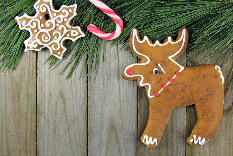 Arbre de sapin de fond de Noël, canne, pain d'épice images stock
