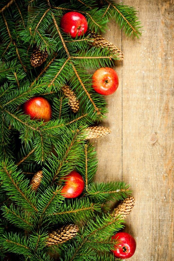 Arbre de sapin de Noël avec des pinecones et des pommes image stock