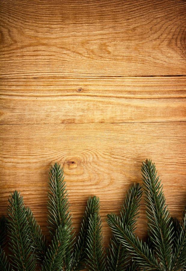 Arbre de sapin sur le bois photos libres de droits