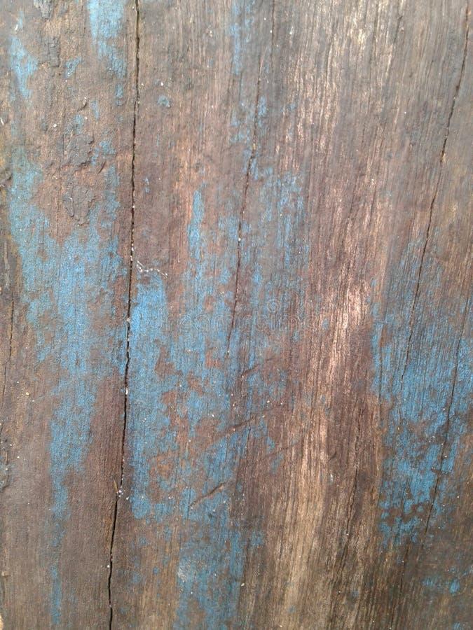 Arbre de texture dans la turquoise et les tons célestes photos stock