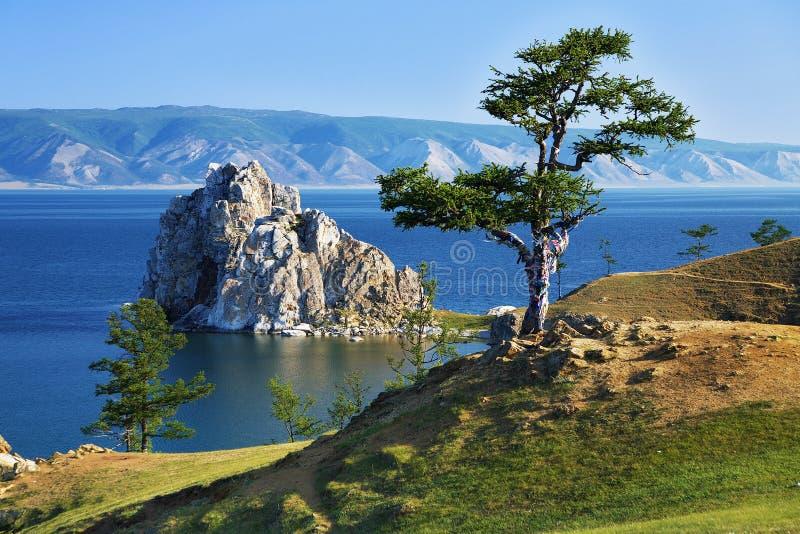Arbre des désirs sur le lac Baikal photographie stock libre de droits