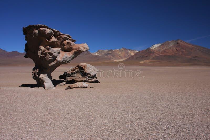 Arbre en pierre dans le désert de Siloli photo libre de droits